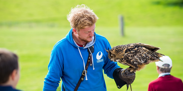 The National Birds of Prey Centre in Helmsley