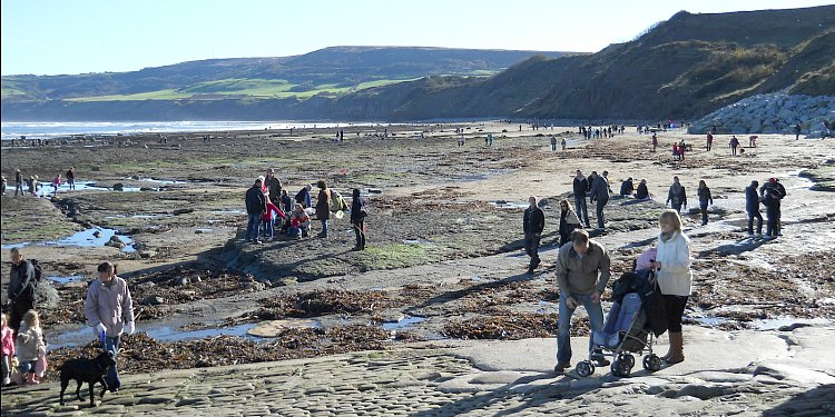 Fossil Hunting at Robin Hoods Bay