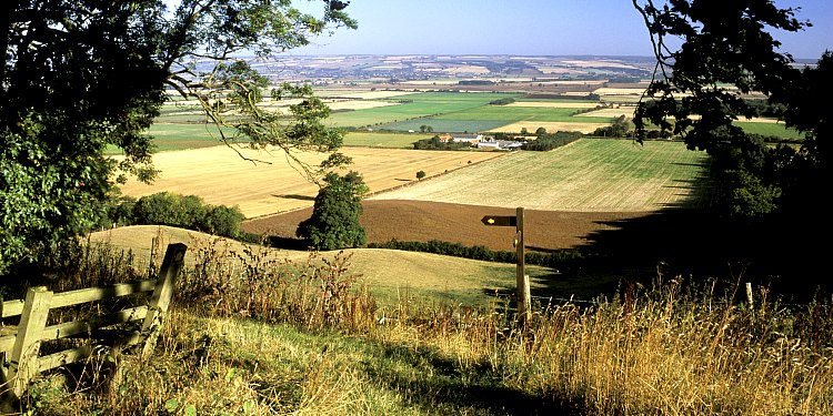 A Guide to the Yorkshire Wolds
